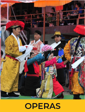 Tibetan Institute of Performing Arts -Operas